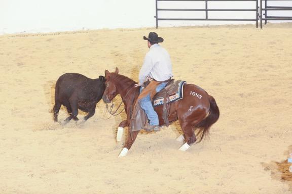 Mid-Year Cutting Horse Sale
